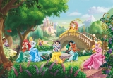 Fototapeta Komar Princess and Pets 8-478 | 368 x 254 cm